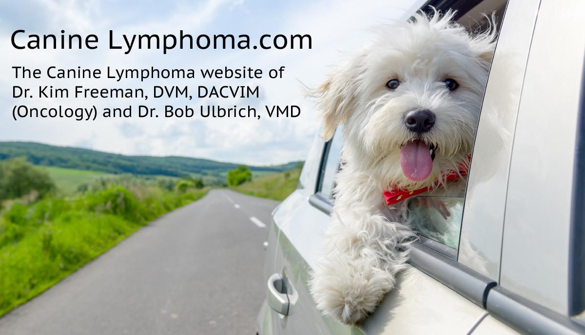 Canine Lymphoma Progression - Canine Lymphoma