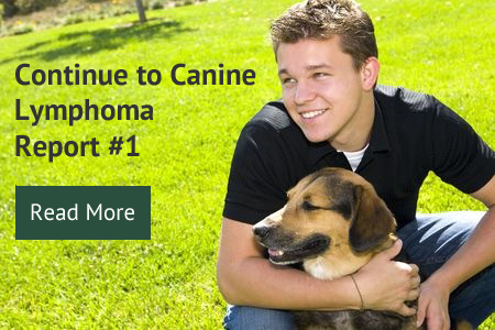 Continue to Canine Lymphoma Report #1