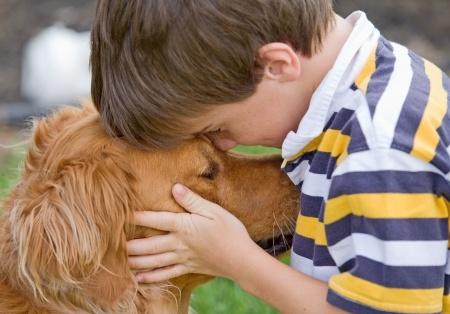 Canine Lymphoma Causes